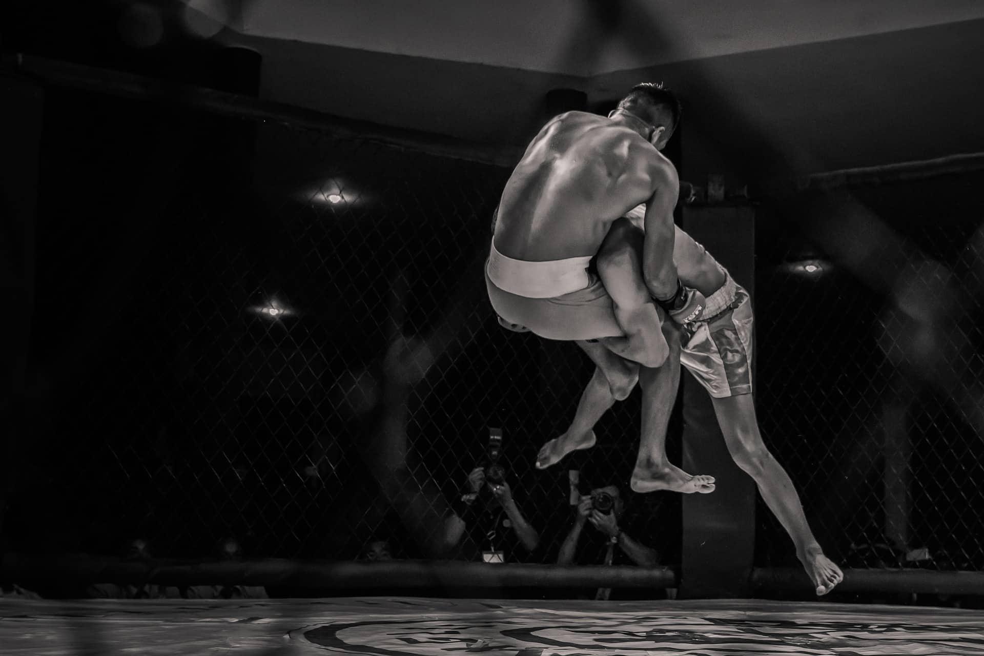 https://pixabay.com/photos/boxing-mma-mixed-martial-arts-3897488/